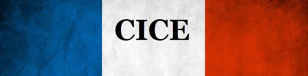 cice France